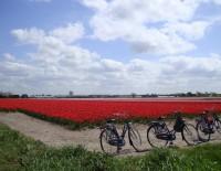 Aicinām apskatīt izstādi par Nīderlandi