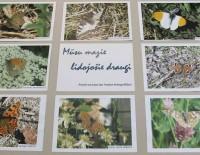 Putni un tauriņi Andas fotogrāfijās